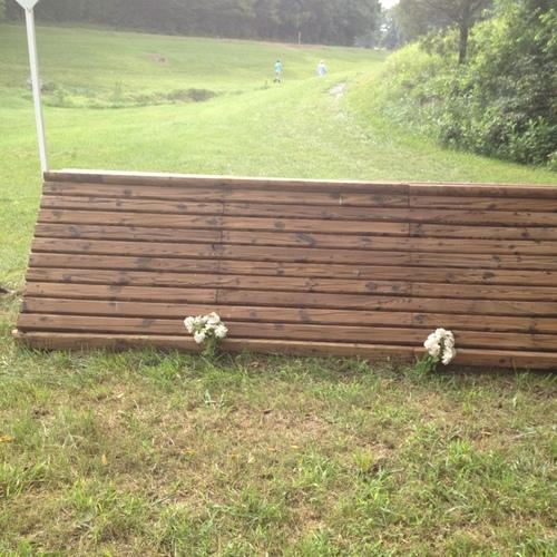 Fence 19B -