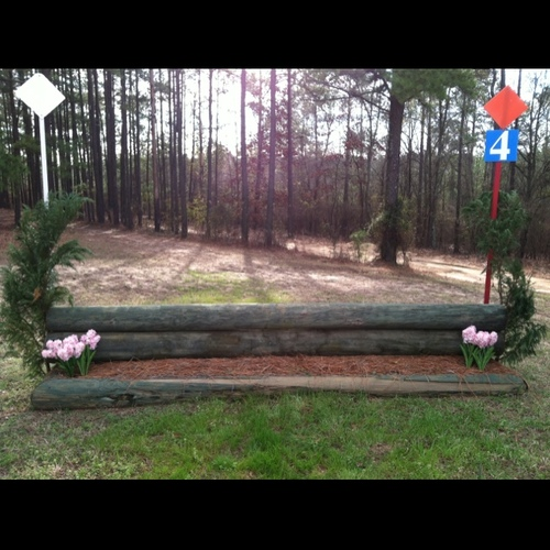 Obstacle 4 - Pine flower box
