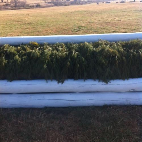Fence 1 -