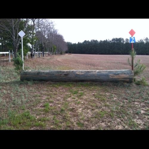 Fence 2 - Log