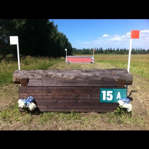 Fence 15A -
