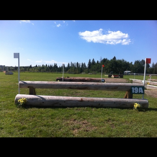 Fence 19A -