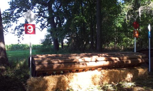 Fence 9 - Turkey feeder