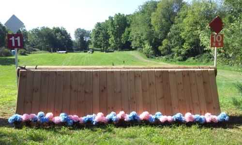 Fence 11 - Pallisade