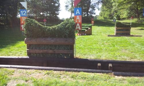 Fence 12AB - Ditch Brush Chevron