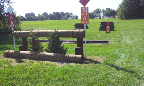 Fence 14ABC - Rails Ditch Skinny Brush