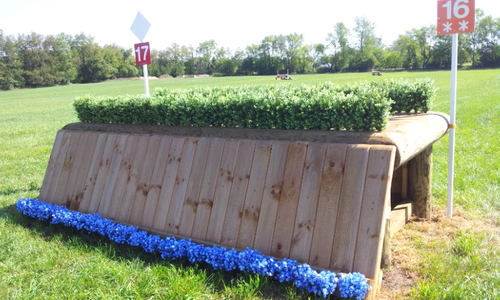 Fence 17 - Brush Oxer