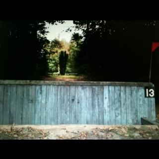 Fence 13 - Waldens wall