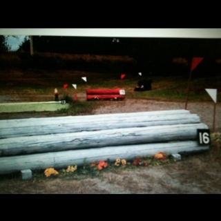 Fence 16 - Roll into water