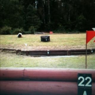 Fence 22A - Glen's gulp