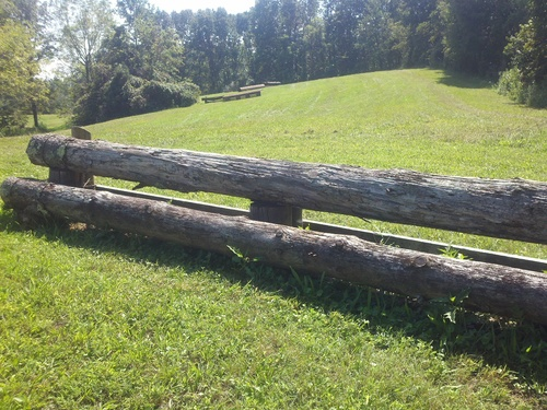 Fence 8 - Logs