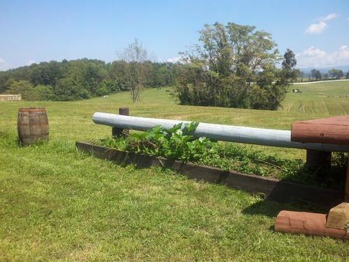Fence 10 - Mulch Mound