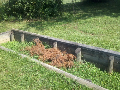 Fence 11 - Open Ditch