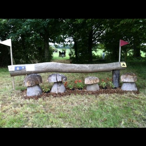 Fence 6A -