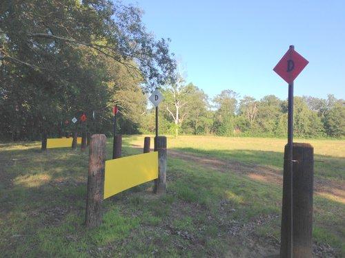 Hindernis 4 - The Yellow Brick Road