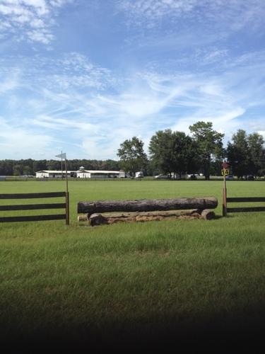 Fence 14 -