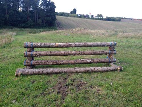 Fence 4 - Gransvinget