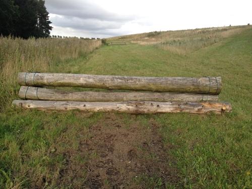 Fence 3 - Lodrette kævler