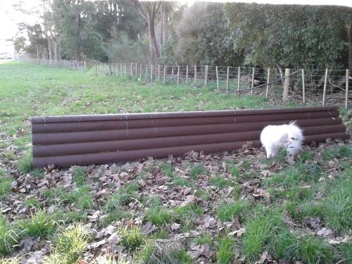 Fence 3B - Double Brush