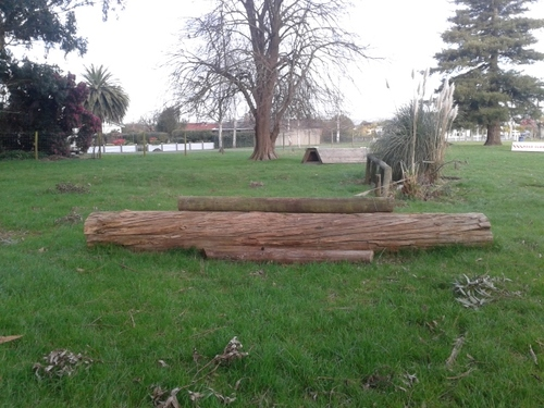 Fence 15 - Log