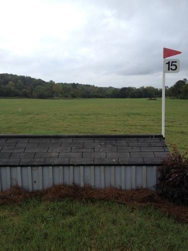 Fence 15 -
