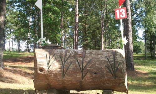 Fence 13 - Turtle Log