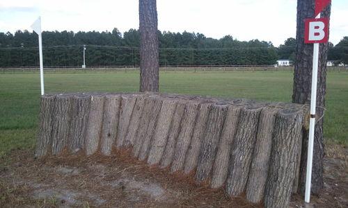 Fence 21B - Narrow