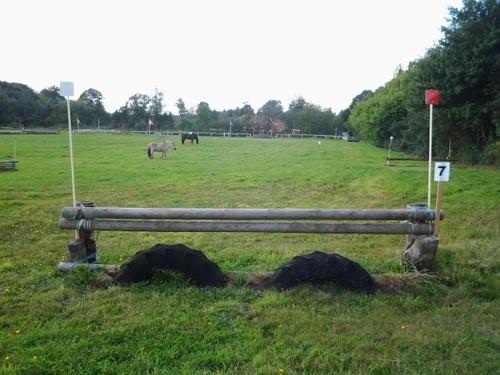 Fence 7 - Hestene er til pynt
