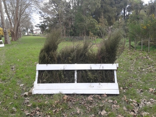 Fence 4A - Brush