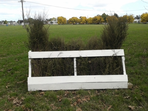 Fence 4B - Brush