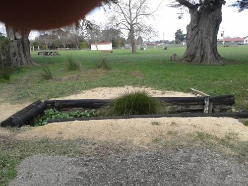Fence 10 - Bull Rush Ditch