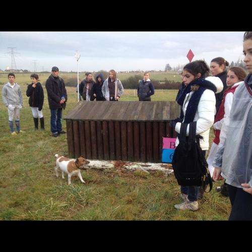Fence 5B -