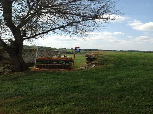 Fence 4 - Ruins Log Box