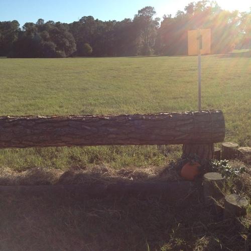 Obstacle 1 - Log