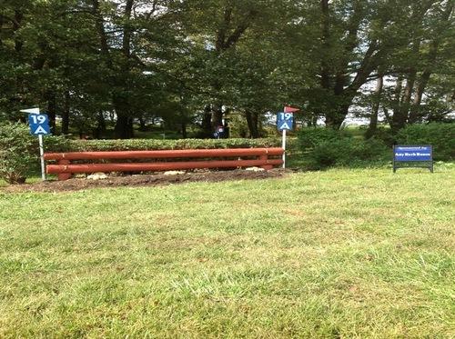 Fence 19A - Hedge
