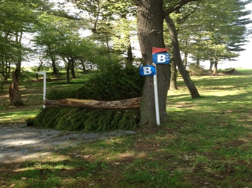 Fence 19B - Narrow Brush