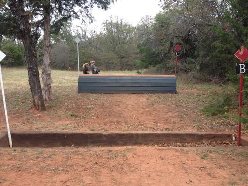 Fence 13B -