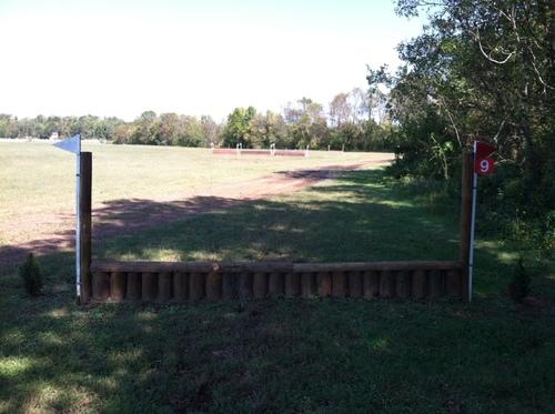 Fence 9 - Palisade