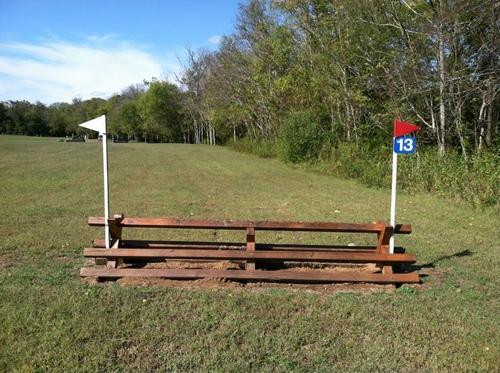 Fence 13 - Brush Rails